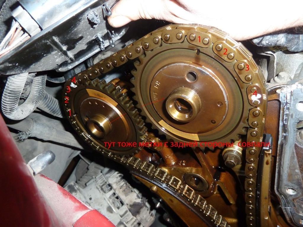 Замена цепи двигателя форд фокус 2 1.8